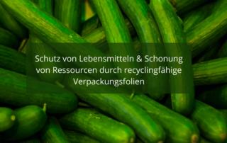 Schutz von Lebensmitteln vor Umwelteinflüssen, Verschmutzung und Beschädigung durch recyclingfähige Verpackungsfolien